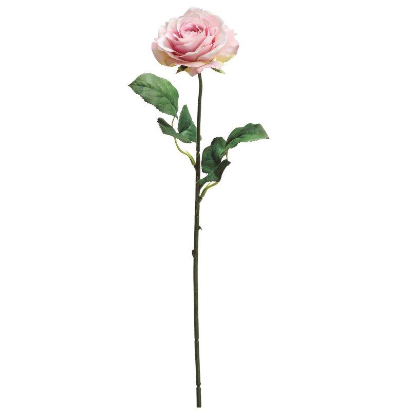 ローズ 薔薇 ライトピンク 単品花材