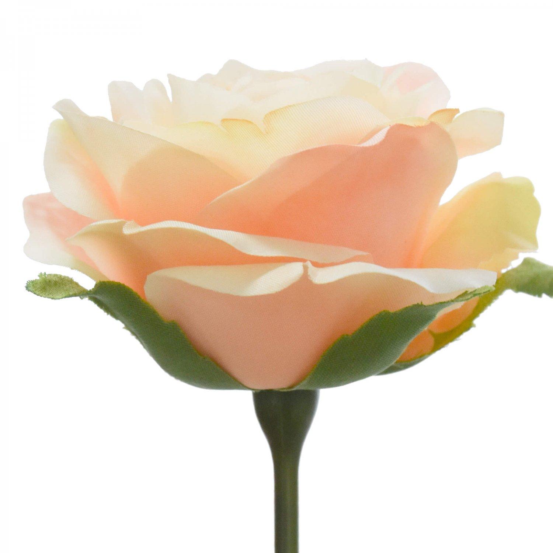 ローズ 薔薇 ピーチ 単品花材