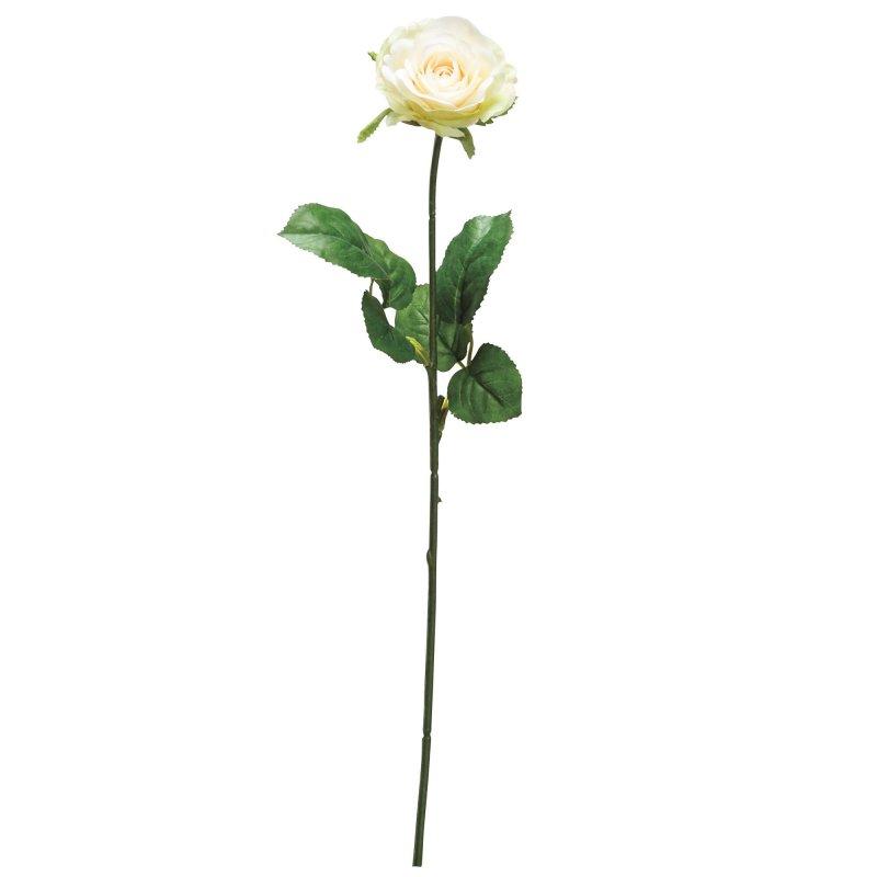ローズ 薔薇 アイボリー 単品花材