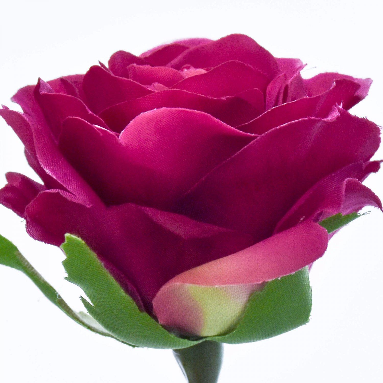 ローズ 薔薇 ワインレッド 単品花材