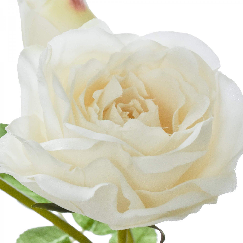 蕾つきローズ 薔薇 ホワイト 単品花材