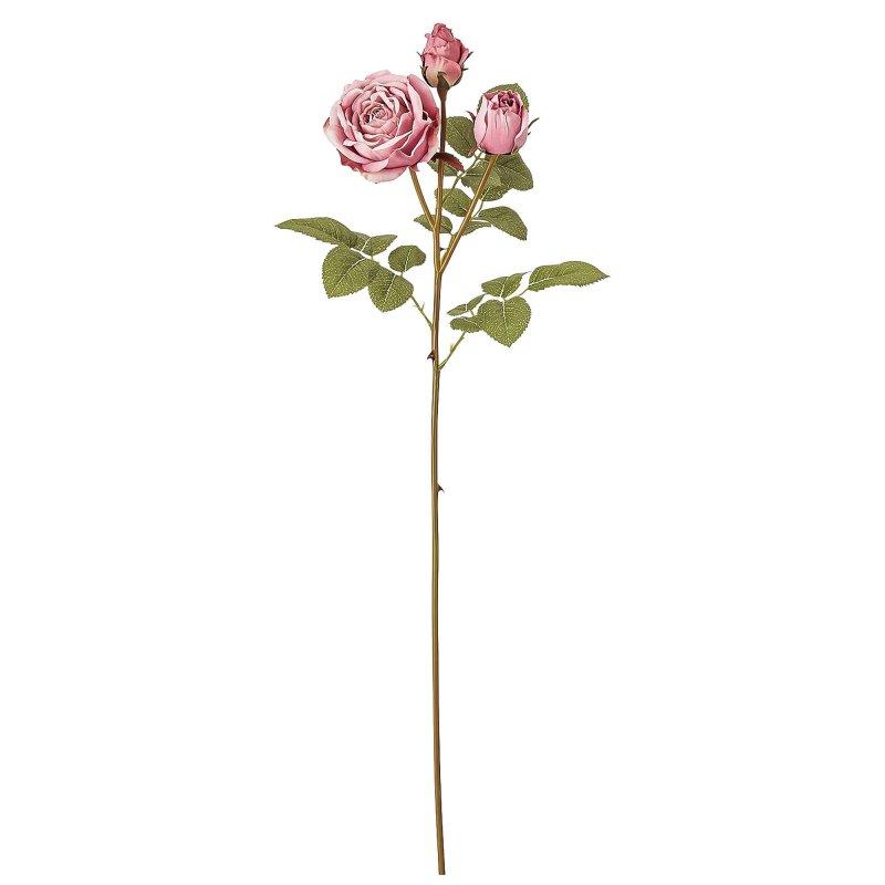 蕾つきローズ 薔薇 モーブピンク 単品花材