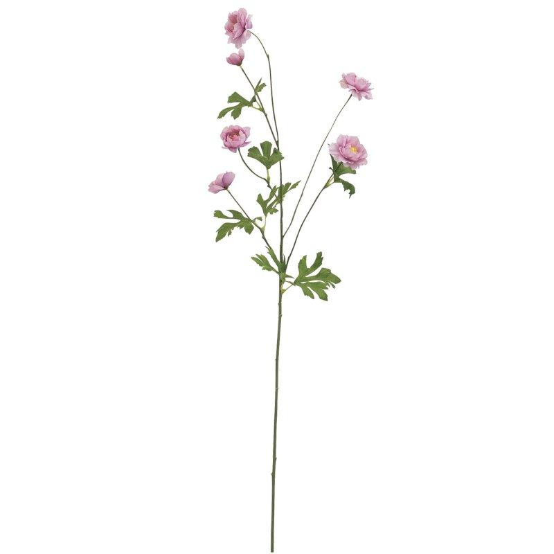 スプレー咲きラナンキュラス ソフトピンク 単品花材