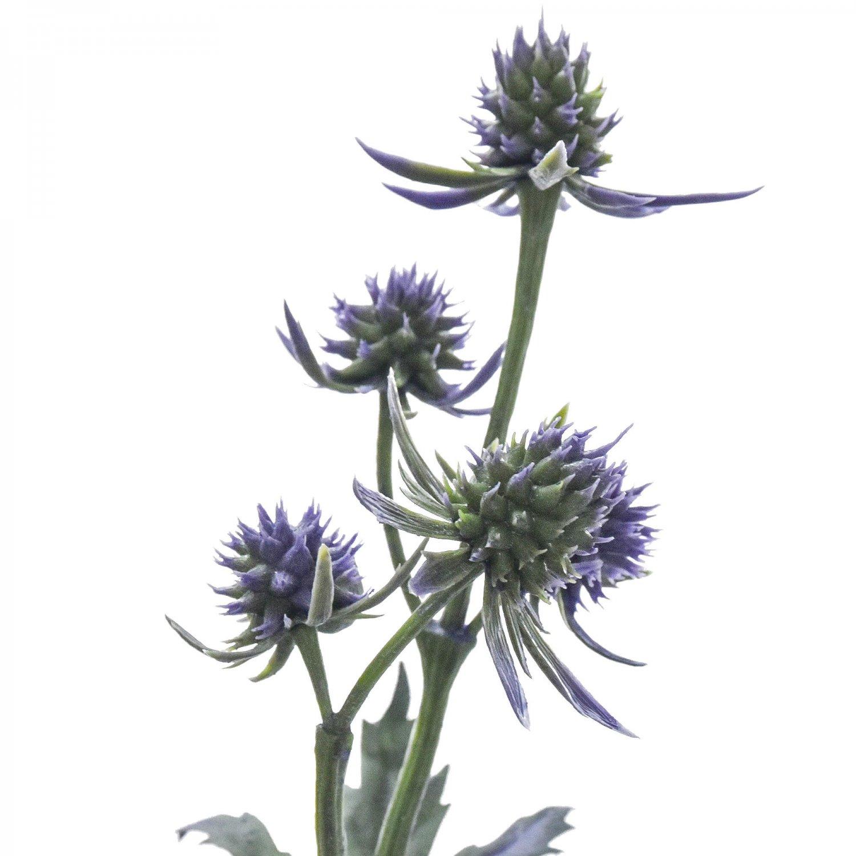 エリンジウム マツカサアザミ パープル 単品花材
