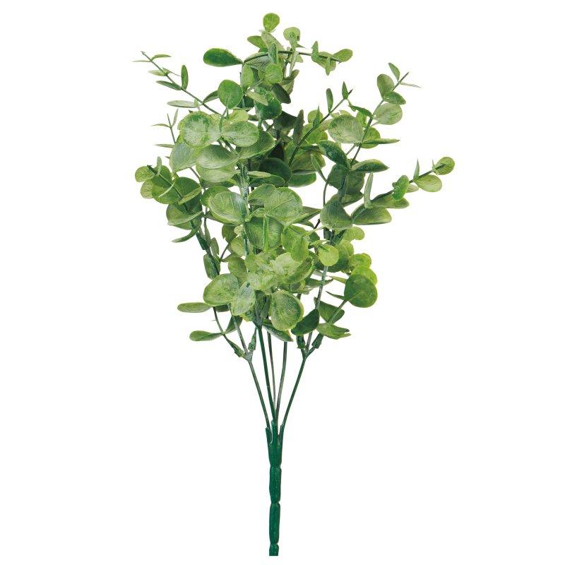 ユーカリブッシュ グリーン 単品花材