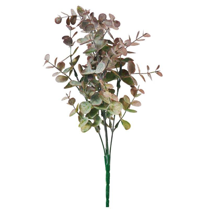 ユーカリブッシュ アッシュグリーン 単品花材