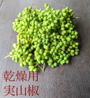 実山椒 / 生山椒  1kg  (乾燥用・山椒粉向き)