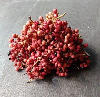 完熟赤山椒 / 生山椒  200g  (乾燥用・山椒粉向き)