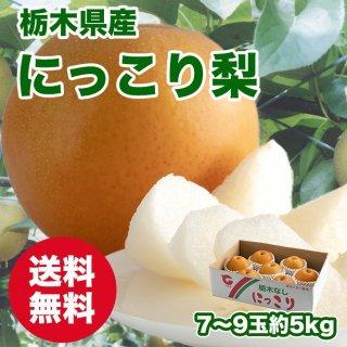 【びっくり大玉】栃木県産 にっこり梨