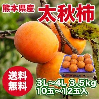 熊本県産 太秋柿
