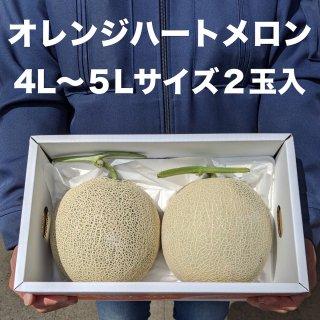 熊本県産オレンジハートメロン2玉