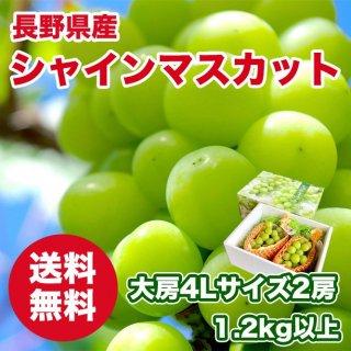 長野県産 シャインマスカット