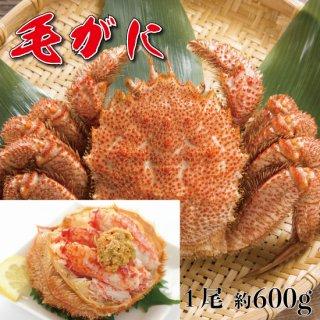 北海道産 毛がに 600g