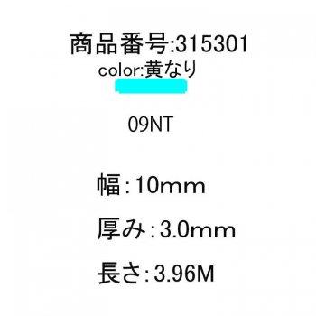 315301<br>GRPバテン10mmx3mmx3.96M<br>(09NT)