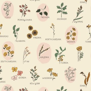 <img class='new_mark_img1' src='https://img.shop-pro.jp/img/new/icons3.gif' style='border:none;display:inline;margin:0px;padding:0px;width:auto;' />TOR-13862 Roadside Wildflowers - The Open Road コットン100%