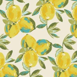 SGE-14453 Yuma Lemons Mist -Sage【カット販売】 コットン100%