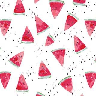 FSH-17411 Waterish Melon- Floralish【カット販売】 コットン100%