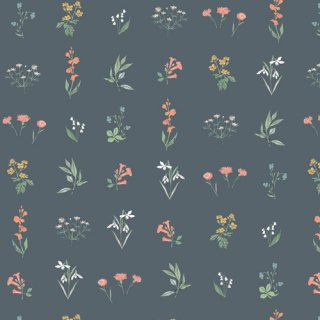 PIC-39457 Botanical Study Soft - Picturesque コットン100%