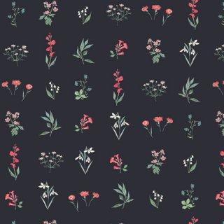 PIC-29457 Botanical Study Dark - Picturesque 【カット販売】 コットン100%