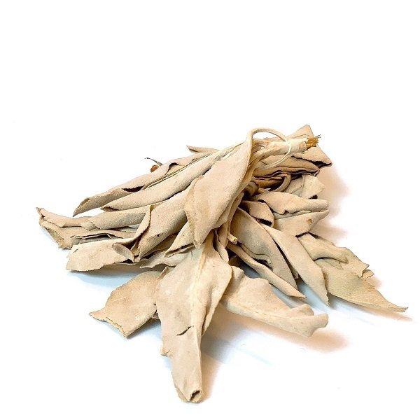 【 浄化用ホワイトセージ(10g) 】<br>パワーストーン/天然石/アクセサリー/ブレスレット/ストラップ/浄化