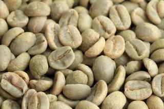 【コーヒー生豆】ベトナムダラット(アラビカ種) Vuong Farm