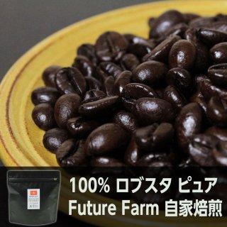 <img class='new_mark_img1' src='https://img.shop-pro.jp/img/new/icons5.gif' style='border:none;display:inline;margin:0px;padding:0px;width:auto;' />ロブスタ ピュア Future Farm シングルオリジン