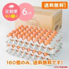 【毎月1日に6ヶ月間お届け】栄味卵(160個)