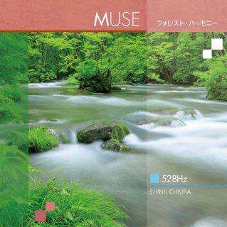 【 528Hz ヒーリング CD 】 MUSE (ミューズ)  フォレスト・ハーモニー / 知浦伸司 ANP-3006 試聴あり [メール便送料無料] (2018)