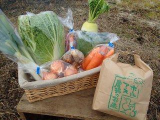 【1日2セット限定出荷】季節の野菜・お米セット