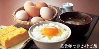 清水養鶏場 【美黄卵】 赤 60個入り