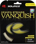【ストリング+張り代セットで20%OFF】ソリンコ    ヴァンキッシュ1.20 【VANQUISH1.20】