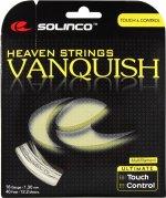 【ストリング+張り代セットで20%OFF】ソリンコ    ヴァンキッシュ1.30 【VANQUISH1.30】