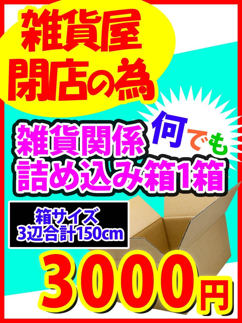 【雑貨屋閉店の為】雑貨関係何でも詰め込み箱1箱(箱サイズ3辺合計150cm)@3000