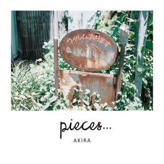 pieces…