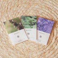 香りが試せる、香りカード 3種セット【メール便対応】