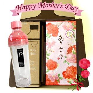 〜500円 新茶 母の日ギフト お茶とドライフルーツでフレーバーティー フィルターインボトルポータブル400mlのセット