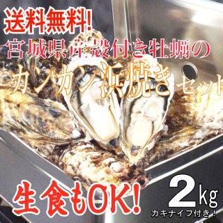 【生食用】【送料無料】宮城県産殻付き牡蠣のカンカン浜焼きセット 2kg入