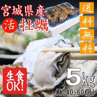 【生食用】【送料無料】宮城県産殻付き牡蠣 5kg【クール便!】