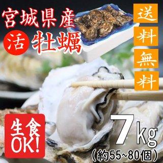 【生食用】【送料無料】宮城県産殻付き牡蠣 7kg【クール便!】
