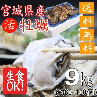 【生食用】【送料無料】宮城県産殻付き牡蠣 9kg【クール便!】