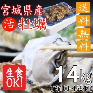 【生食用】【送料無料】宮城県産殻付き牡蠣 14kg【クール便!】