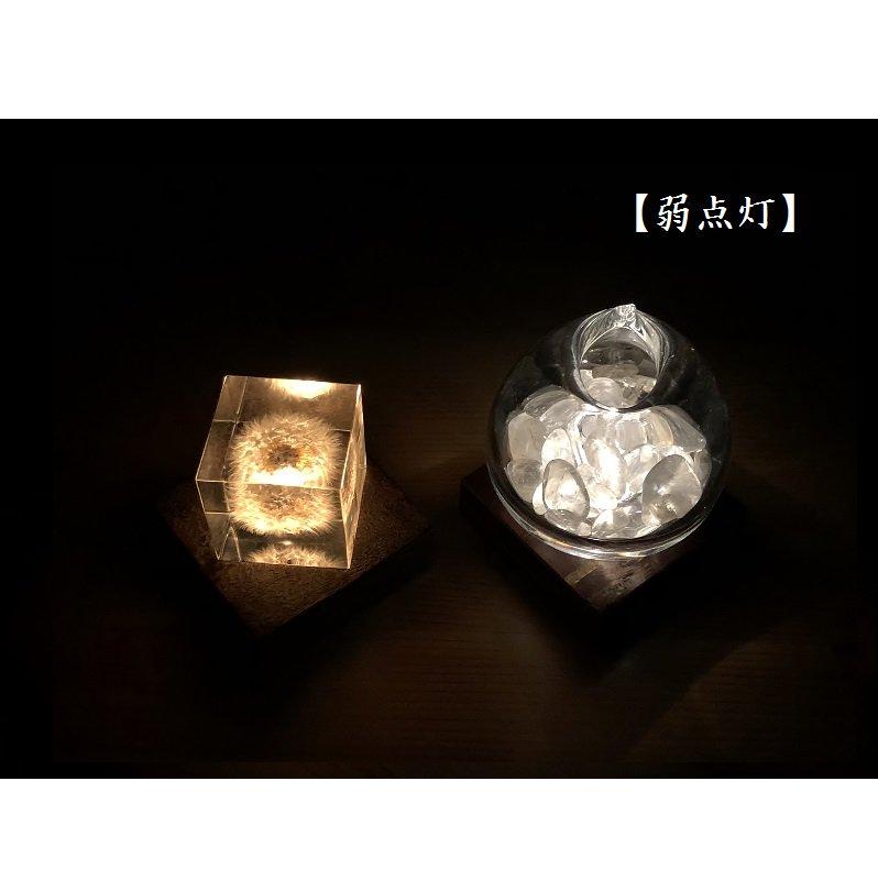 Light Base kaku 無地皮+霜降皮(3000K/ゴールド)