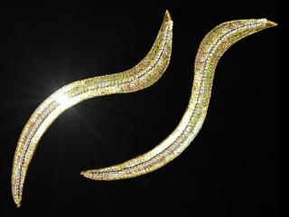 スパンコールモチーフ Gold HG(5351A)