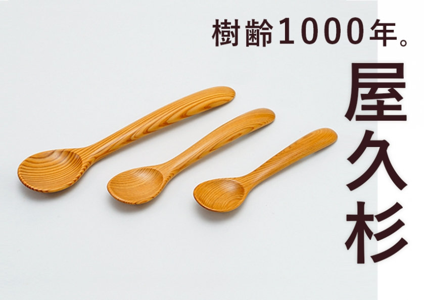 屋久杉の大人気工芸品・雑貨特集