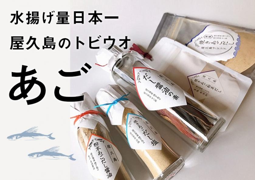 屋久島のあご(トビウオ)特集