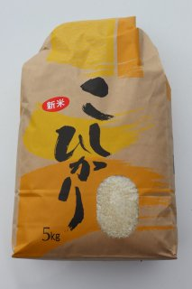 【新米】令和2年9月収穫   コシヒカリ 5kg