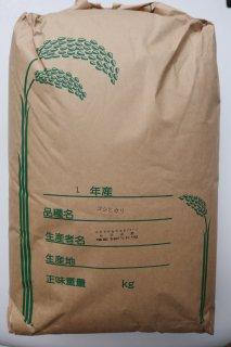 【新米】令和2年9月収穫  コシヒカリ 30kg