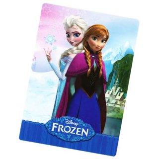 ディズニー アナと雪の女王 下敷きA DISNEY