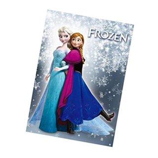 ディズニー アナと雪の女王 ミニノート DISNEY
