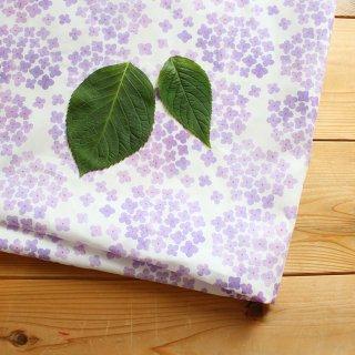 紫陽花(パープル)